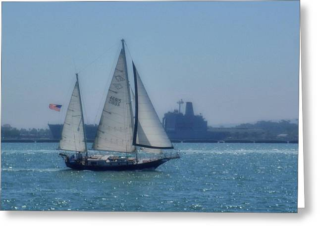 San Diego Bay Greeting Card by JAMART Photography