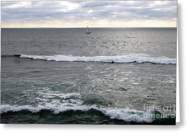 San Diego Sailboat With Waves Greeting Card