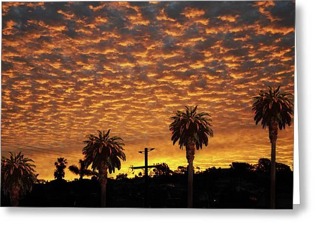 San Diego Sunrise With Palm Trees Greeting Card