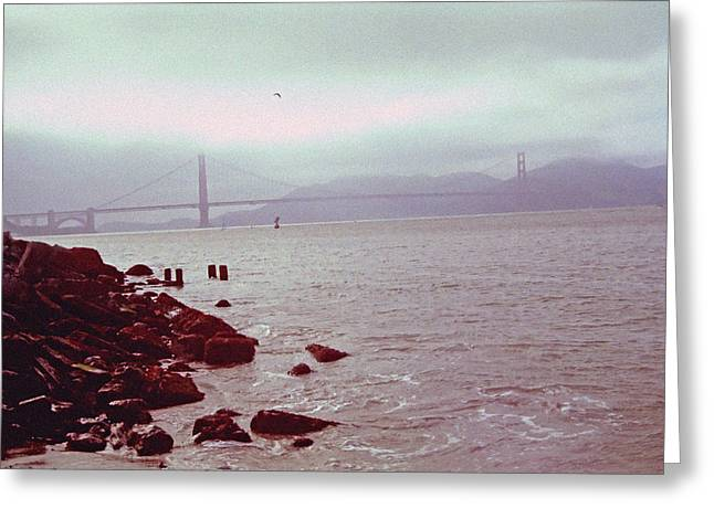 San Francisco Bay Recreation 2 Greeting Card by Steve Ohlsen