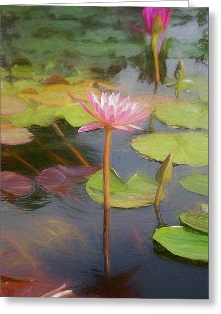 San Juan Capistrano Water Lilies Greeting Card