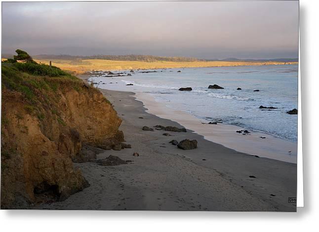 San Simeon Coastal II Color Greeting Card by David Gordon