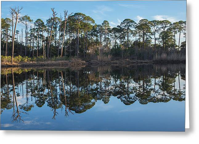 Greeting Card featuring the photograph Sanctuary Reflection  by Julie Andel
