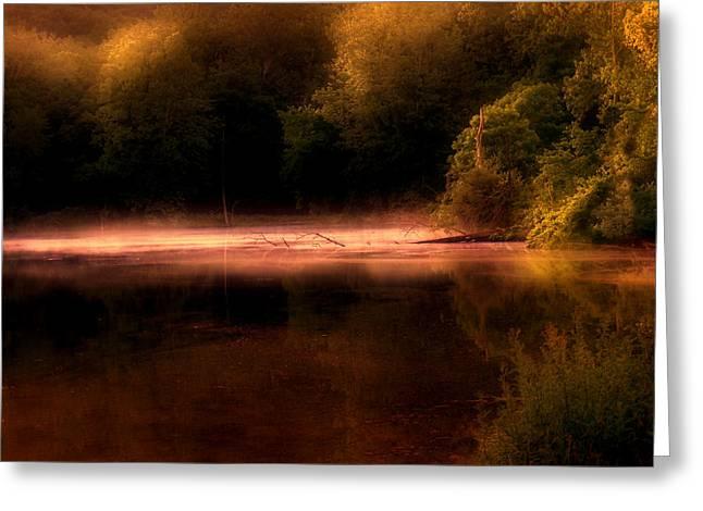 Sanctuary Greeting Card by Tom Mc Nemar