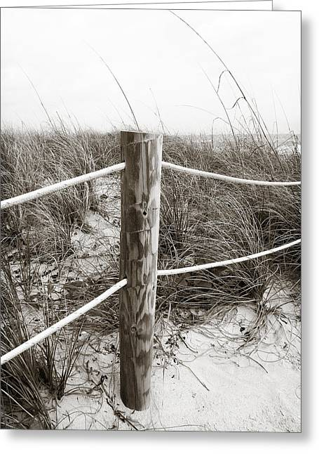 Sand And Grass Greeting Card by Julie Palencia