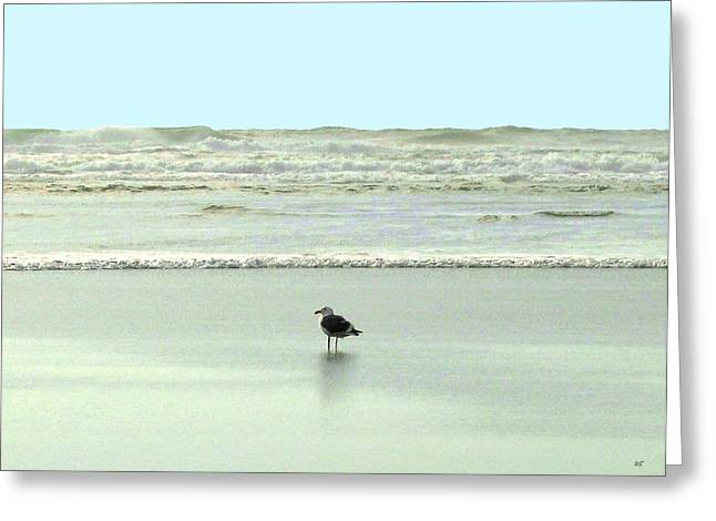 Sand And Sea 8 Greeting Card by Will Borden