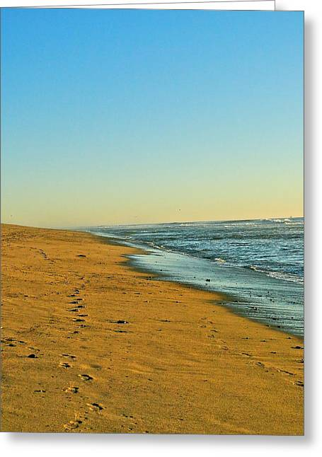 Sand And Sea Greeting Card by Liz Vernand