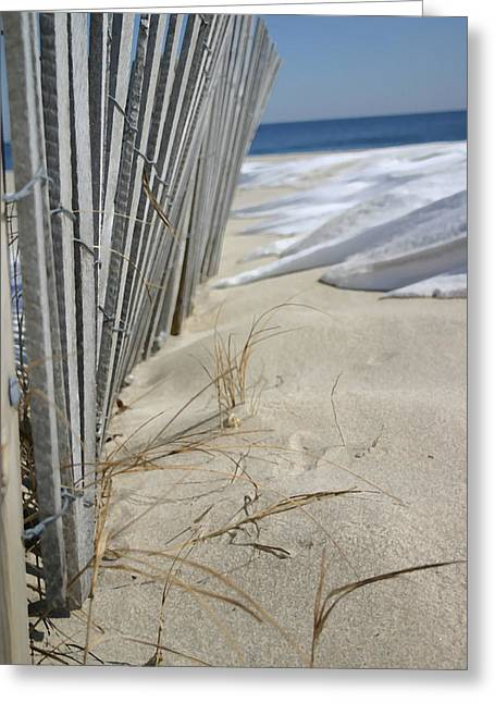 Sand And Snow Greeting Card by Mary Haber