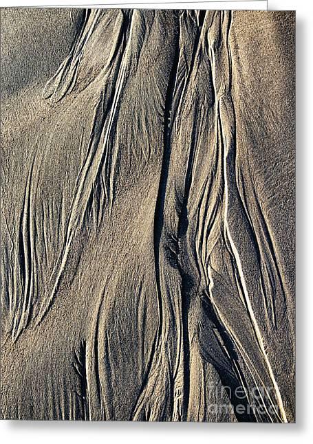 Sand Angel Greeting Card by Tim Gainey