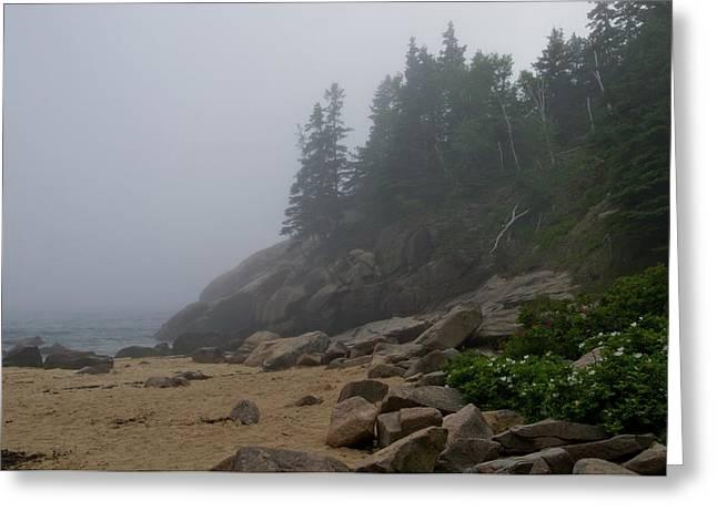 Sand Beach In A Fog Greeting Card