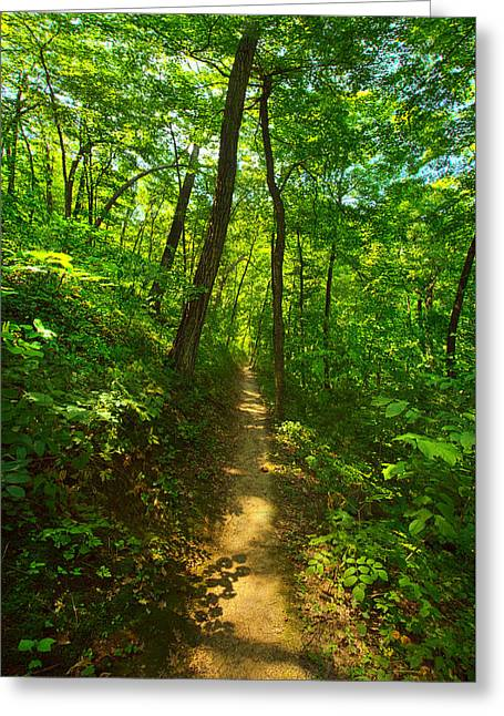 Sand Cave Trail Greeting Card by Phil Koch