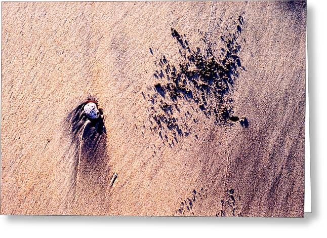 Greeting Card featuring the photograph Sand Crab Marks 2 by Lyle Crump