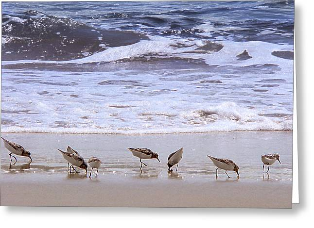 Sand Dancers Greeting Card