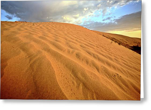 Sand Dune At Great Sand Hills In Scenic Saskatchewan Greeting Card by Mark Duffy