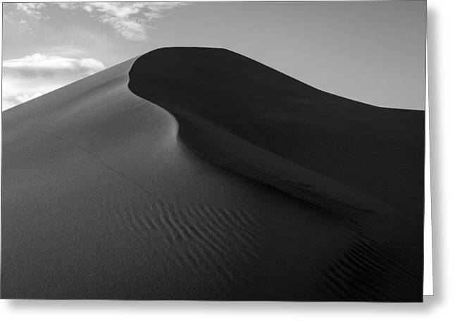 Sand Dune Beetle Tracks Greeting Card