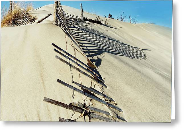 Sand Dune Fences And Shadows Greeting Card