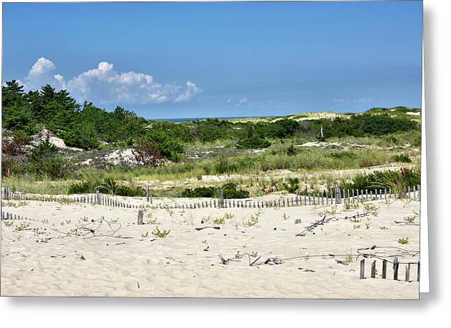 Greeting Card featuring the photograph Sand Dune In Cape Henlopen State Park - Delaware by Brendan Reals