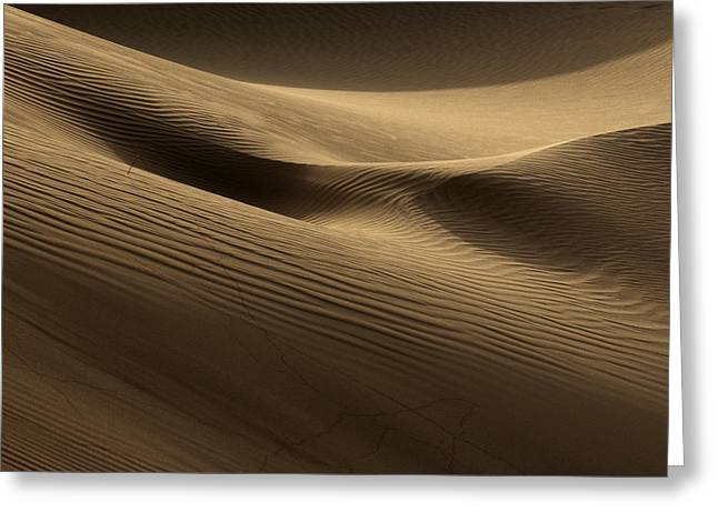 Sand Dune Greeting Card by Phil Crean