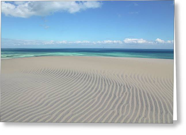 Sand Dune Ripples And The Ocean Beyond Greeting Card