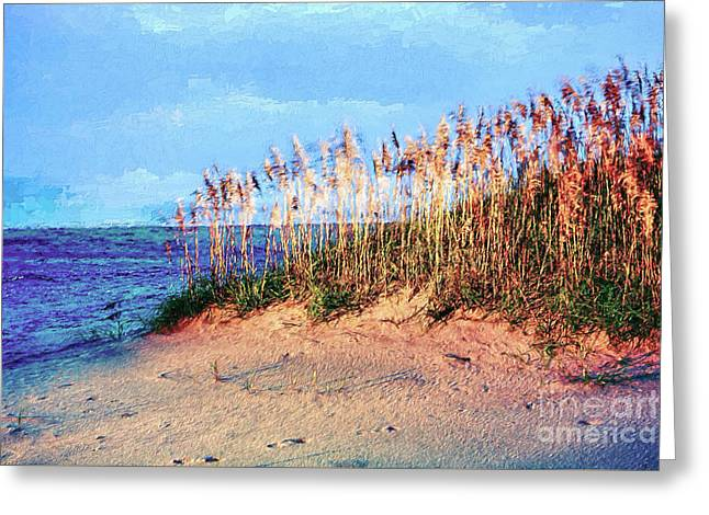 Sand Dune Sea Oats Sunrise Outer Banks Ap Greeting Card by Dan Carmichael