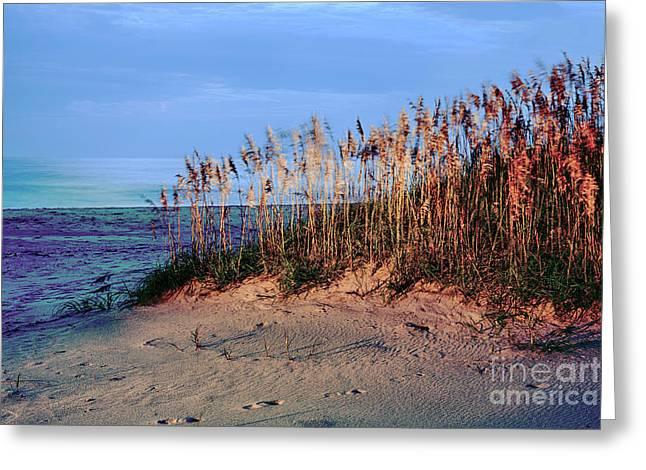 Sand Dune Sea Oats Sunrise Outer Banks Greeting Card by Dan Carmichael