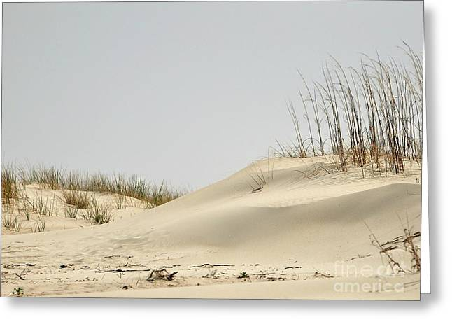 Sea Oats Greeting Cards - Sand Dunes and Sea Oats Greeting Card by Al Powell Photography USA