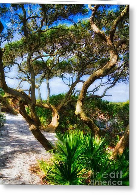 Sand Dunes At Grayton Beach # 3 Greeting Card by Mel Steinhauer