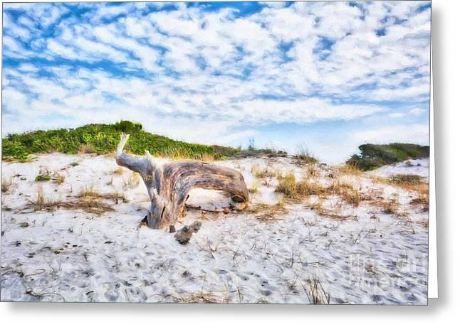 Sand Dunes At Grayton Beach Greeting Card by Mel Steinhauer