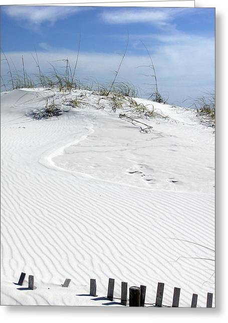 Greeting Card featuring the photograph Sand Dunes Dream 2 by Marie Hicks
