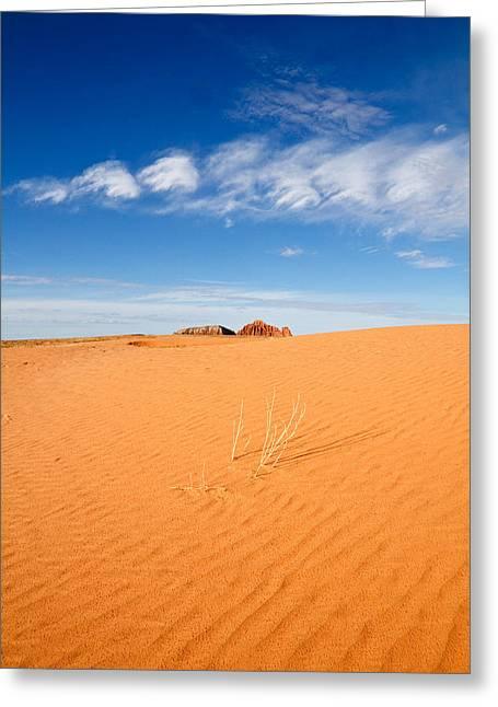 Sand Dunes In San Rafael Desert Greeting Card by Utah Images