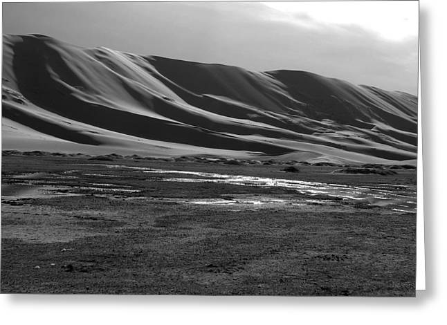 Sand Dunes Of The Gobi Greeting Card