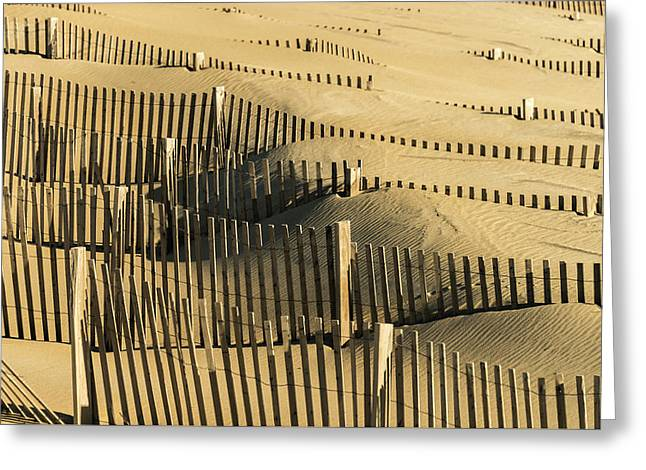 Sand Dunes Of The Outer Banks Greeting Card