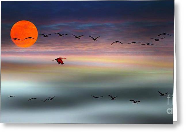 Sand Hill Cranes At Moonrise Greeting Card by Julie Dant