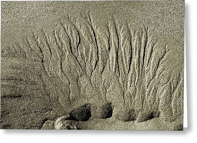 Sand Patterns On The Beach  1 Greeting Card