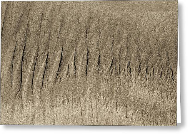 Sand Patterns On The Beach 3 Greeting Card