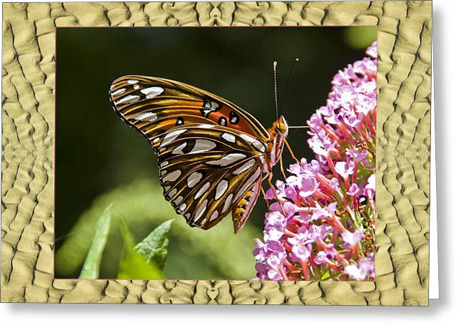 Greeting Card featuring the photograph Sandflow Butterfly by Bell And Todd