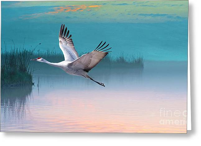 Sandhill Crane And Misty Marshes Greeting Card