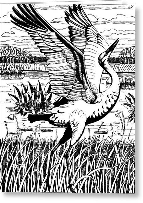 Sandhill Crane At Payne's Prairie Greeting Card by Tim Treadwell