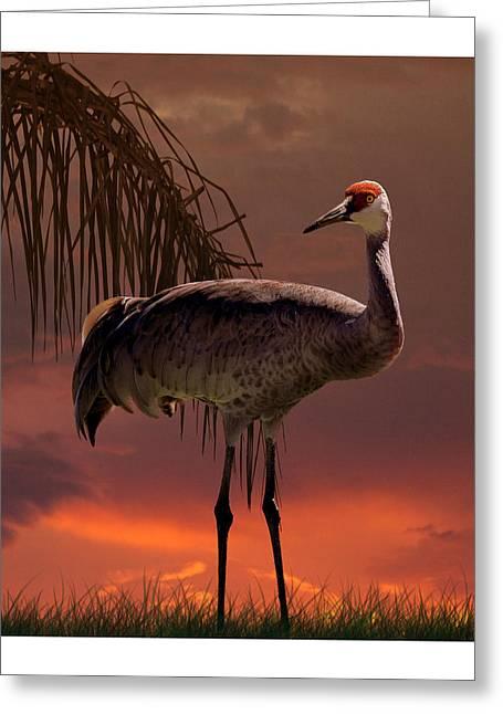Sandhill Crane At Sunset Greeting Card