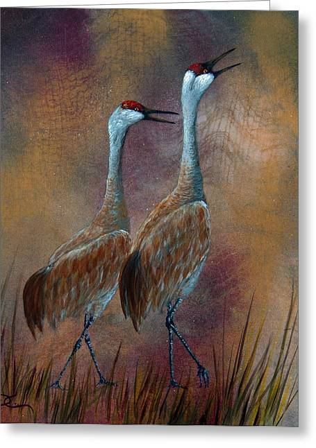 Sandhill Crane Duet Greeting Card by Dee Carpenter