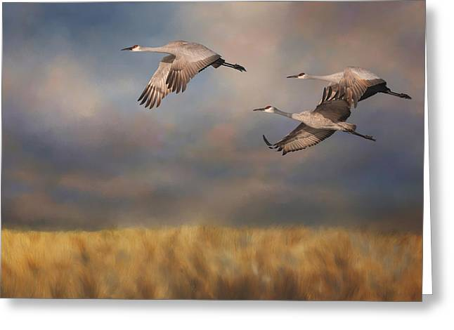 Sandhill Crane Trio In Flight 3 Greeting Card by SharaLee Art