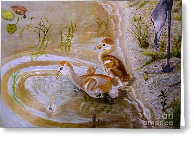 Sandhill Cranes Chicks First Bath Greeting Card
