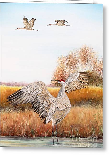 Willow Lake Greeting Cards - Sandhill Cranes-JP3161 Greeting Card by Jean Plout