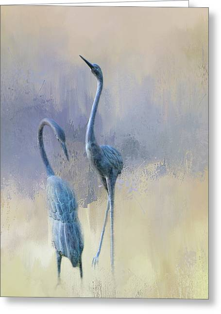 Sandhill Cranes Greeting Card by Terry Davis