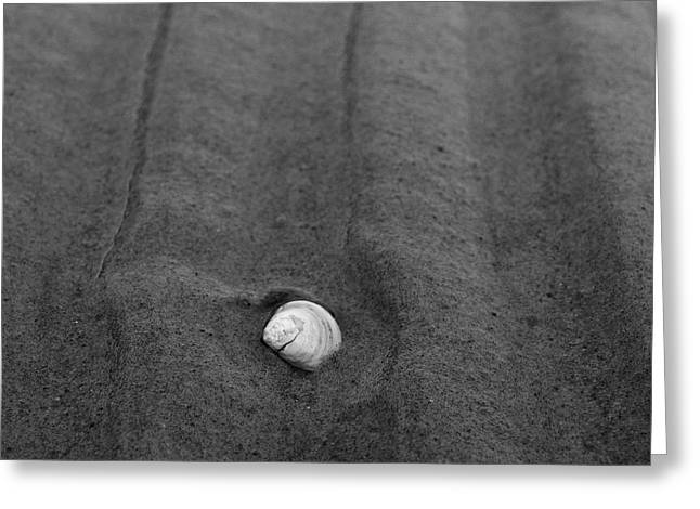 Greeting Card featuring the photograph Sandlines by Jouko Lehto