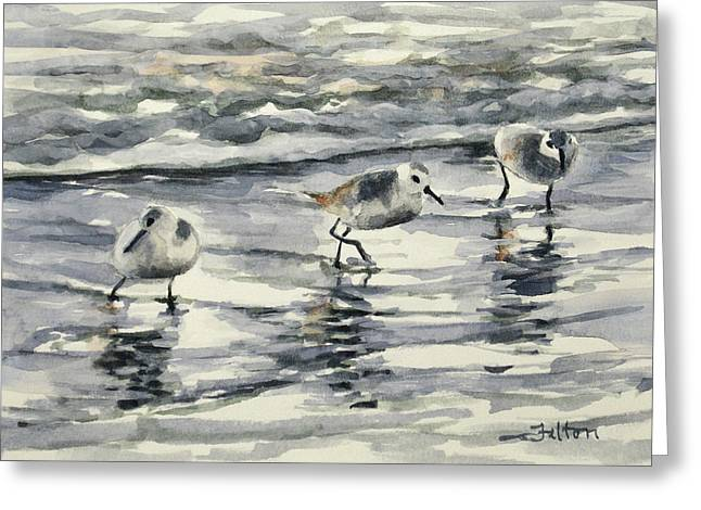Sandpipers 3  12-11-17 Greeting Card