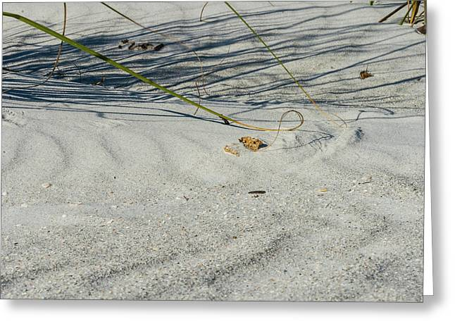 Sandscapes Greeting Card