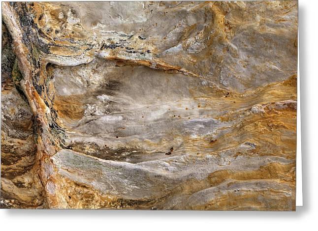 Sandstone Formation Number 2 At Starved Rock State Greeting Card by Steve Gadomski