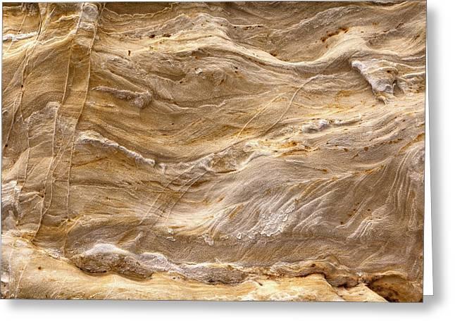 Sandstone Formation Number 3 At Starved Rock State Greeting Card by Steve Gadomski