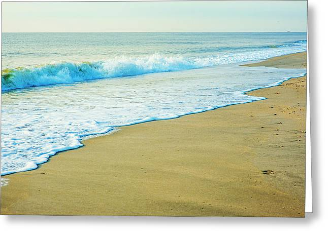 Sandy Hook Beach, New Jersey, Usa Greeting Card